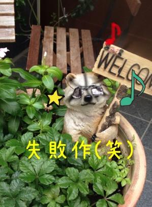 karu1.jpgのサムネール画像
